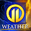 Image result for wpxi weather
