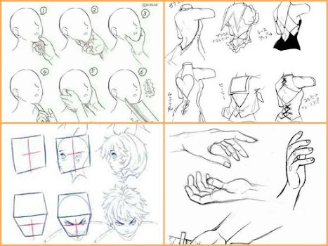 Drawing Anime Step by Steps