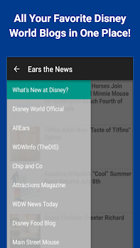 Ears the News: Disney World