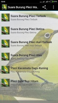 Suara Burung Pleci Gacor mp3 - by Detarp Creative - Music   Audio ... 06dc796e3f