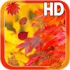Autumn Leaves HD Free