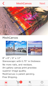 Canvas Prints that Stick to Walls by MeshCanvas