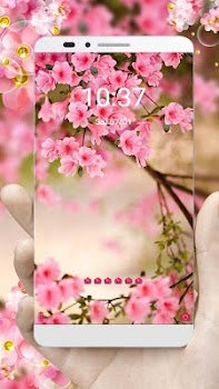 Pink Summer Flower Theme