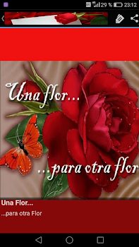 Frases De Amor Con Flores By New Generation Apps Android