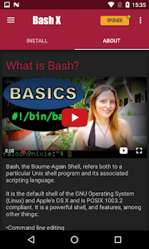 Bash Shell X [Root]