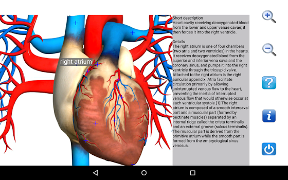 Best 10 Anatomy Apps - AppGrooves