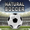 Natural Soccer - Fun Arcade Football Game