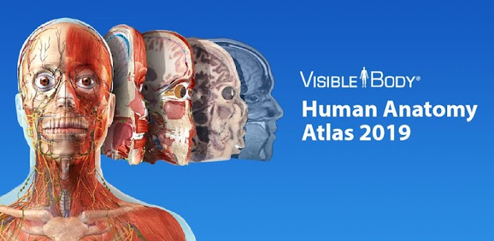 Human Anatomy Atlas 2019 Complete 3d Human Body By Visible Body
