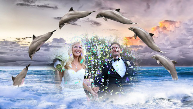 dolphin fish photo frame costume montage editor - by Insa Softtech ...