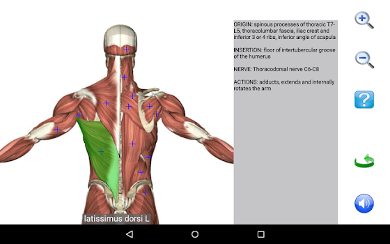 Visual Anatomy Free - by Education Mobile - #3 App in Anatomy ...