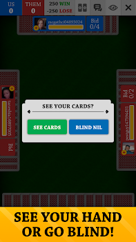 Spades Free Card Games Online and Offline