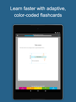 Brainscape Flashcards
