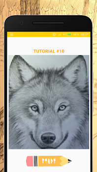 How to Draw Wolves - Easy Drawing Step by Step