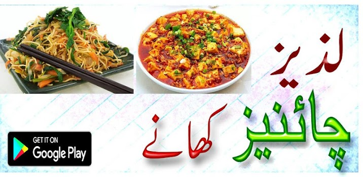 Chinese dishes in urdu by islamichub food drink category 12 chinese dishes in urdu forumfinder Image collections