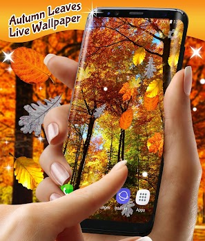 Autumn Leaves Live Wallpaper - by HD Live Wallpapers and Clocks - Category - 300 Reviews - AppGrooves: Discover Best iPhone & Android Apps & Games