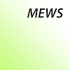MEWS (Modified Early Warning Score)