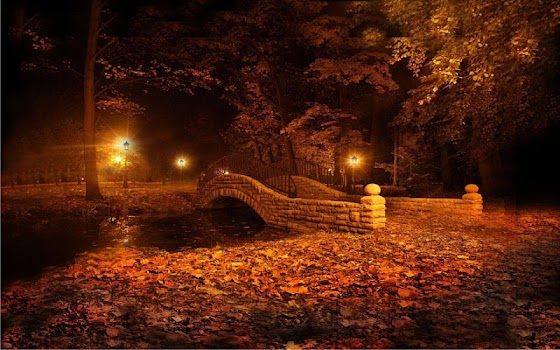 Autumn Twinkle Lights Live Wallpaper By Free Apps Factory