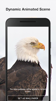 Eagle Live Wallpaper PRO