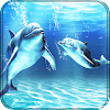 Dolphins Live Wallpaper