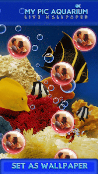 My Pic Aquarium Live Wallpaper By Heather Art Lifestyle Category