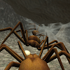 Spider Nest Simulator - insect and 3d animal game