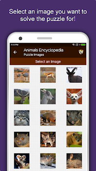 Animal Encyclopedia Complete Reference Guide Free