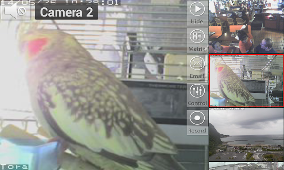 Viewer for Linksys IP Cameras