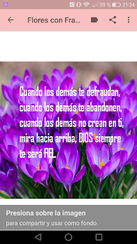 Flores Con Frases Cristianas By Creative Image Apps