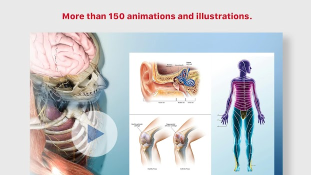 Anatomy & Physiology - by Visible Body - Medical Category - 196 ...