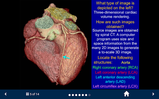 Basic Radiology - SecondLook - by The University of Michigan ...